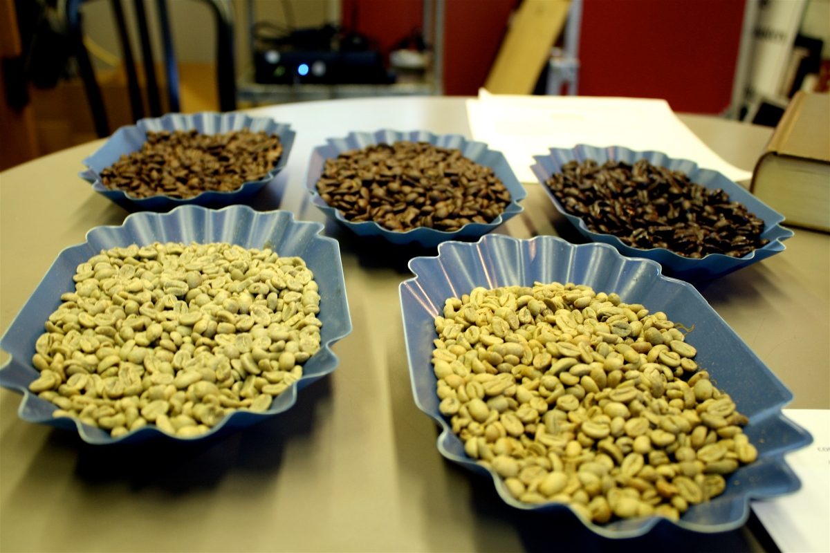 First row: dried beans (not roasted). Last row: Light, medium and dark roast.